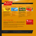 Theme Orange spice html + css