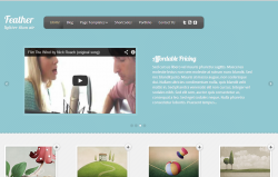 theme WordPress elegantthemes